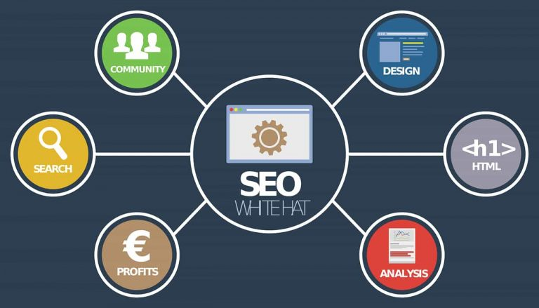 Why Is Seo Important for Every Business